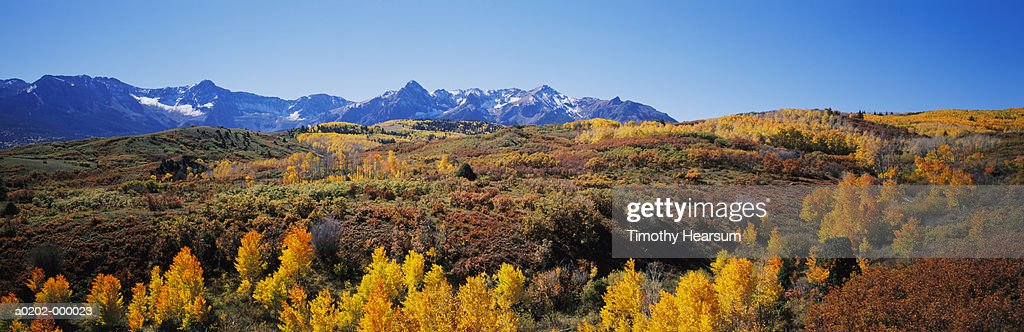 Mountainside Forests in Autumn : Stock Photo