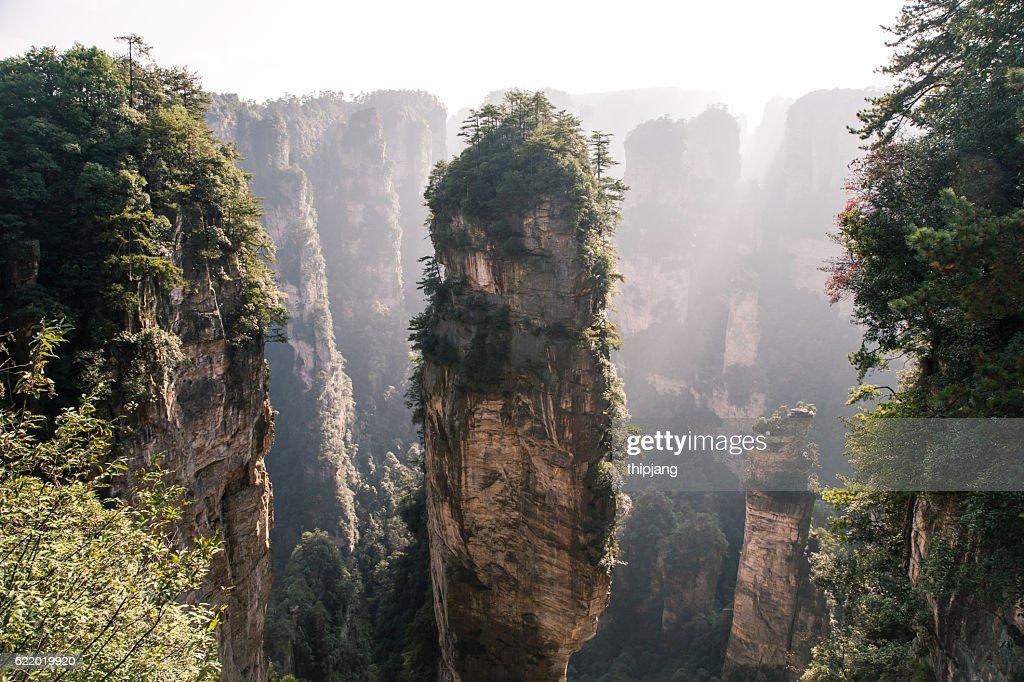 Mountans of Zhangjiajie National Forest Park, landscape scenery, Zhangjiajie, Hunan, China : Stock Photo