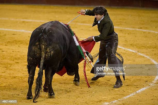 Mounted Bullfighter Diego Antonio Ventura performs during the Bullfighting Charity Festival held in honor of Spanish Banderillero Vicente Yanguez...