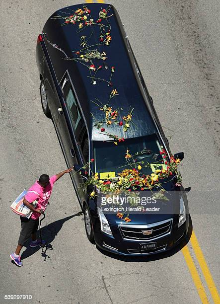 A mourner drops a rose on the hearse as the funeral procession for Muhammad Ali makes its way along Broadway to his burial in Cave Hill Cemetery in...