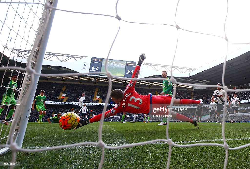 Mousa Dembele (4th L) of Tottenham Hotspur scores his team's second goal past Jordan Pickford of Sunderland during the Barclays Premier League match between Tottenham Hotspur and Sunderland at White Hart Lane on January 16, 2016 in London, England.