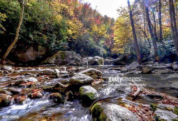 mouse creek falls in the great smokey mountains national park - parque nacional das great smoky mountains - fotografias e filmes do acervo