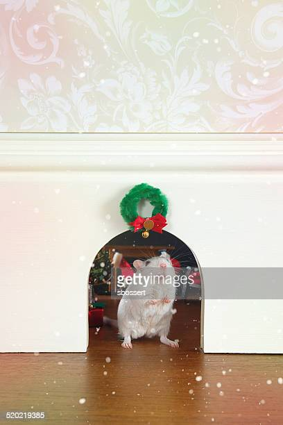 mouse hole at christmas - gerbil stock pictures, royalty-free photos & images