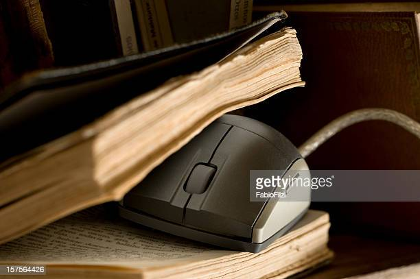 mouse in the old book - fabio filzi stock photos and pictures
