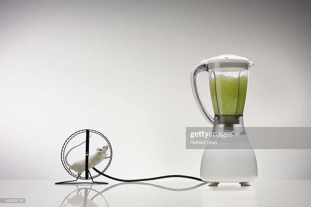 Mouse running on wheel powering blender : Stock Photo
