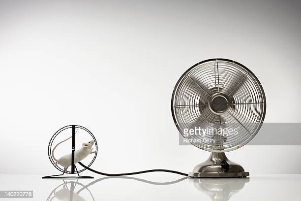 Mouse running on wheel powering fan