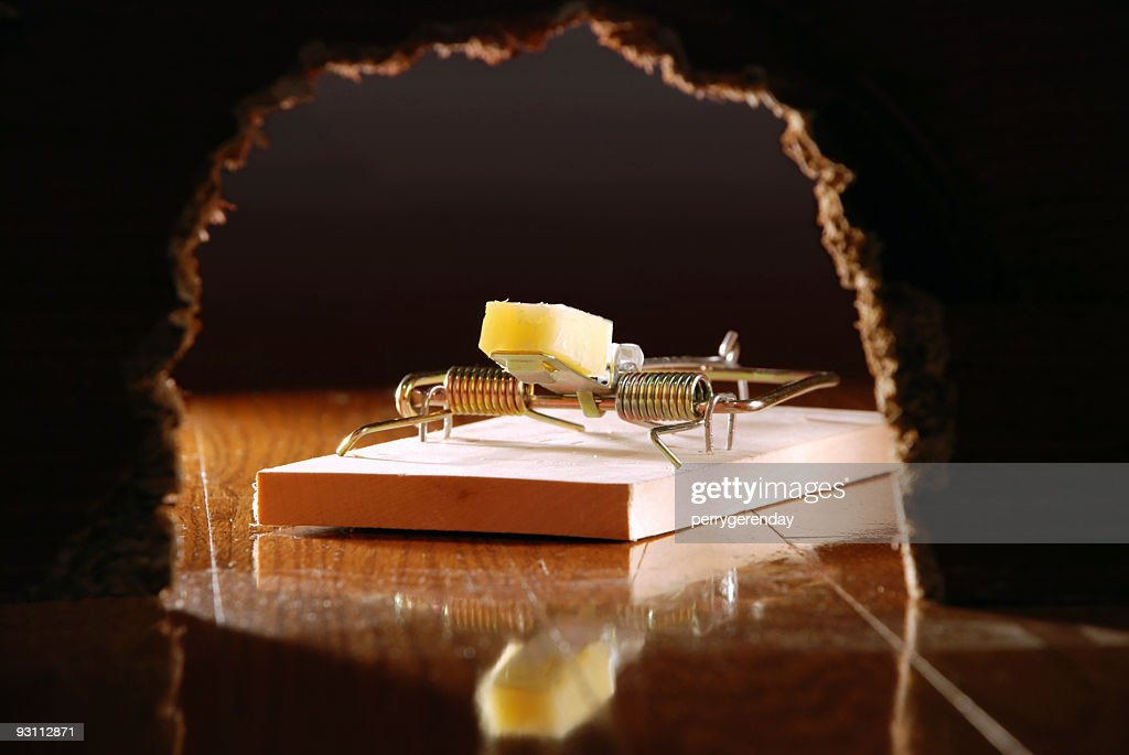 Mouse Trap and Cheese Seen Through Wall Hole : Stock Photo