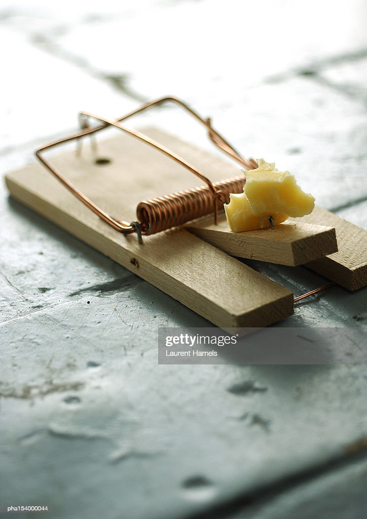 Mousetrap and cheese. : Stock Photo
