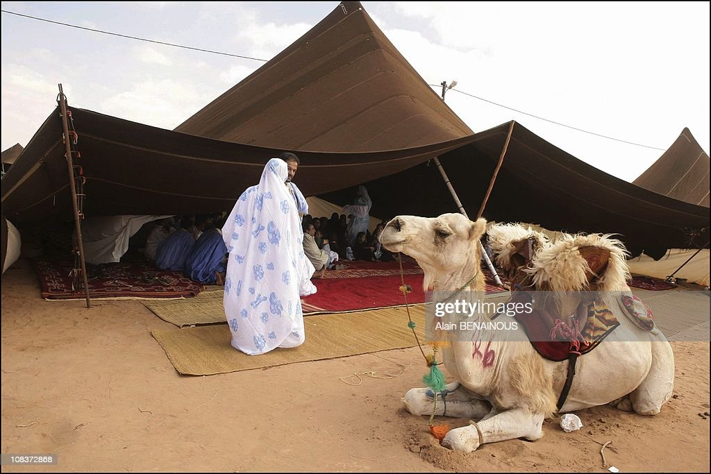 Moussem Of Tan Tan Tuareg festival in Tan Tan Morocco on September 17 2005 & Tuareg Tent Stock Photos and Pictures | Getty Images