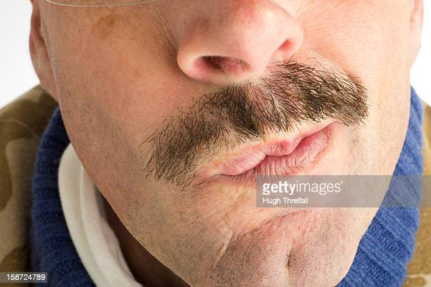 moustache, middle aged man - hugh threlfall stock pictures, royalty-free photos & images