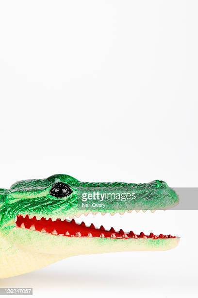 Mouth of Plastic Toy Crocodile