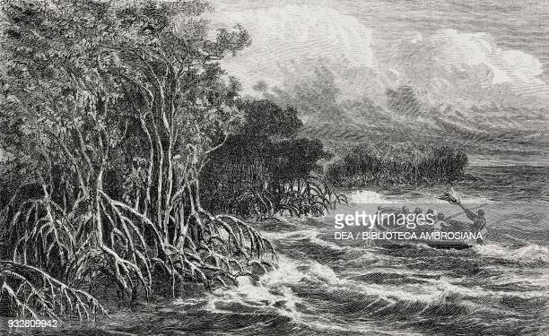 Mouth of the Sagnassu river Brazil drawing by Riou from a sketch by Biard from Two years in Brazil by Auguste Francois Biard 18581859 from Il Giro...