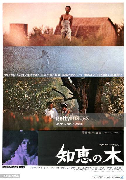 Movie poster advertises the Japanese release of 'The Learning Tree' directed by Gordon Parks Sr and starring Kyle Johnson Joel Fluellen Alex Clarke...