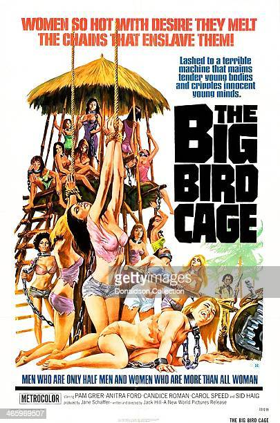 Movie poster for 'The Big Bird Cage' starring Pam Grier, released by New World pictures in 1972.