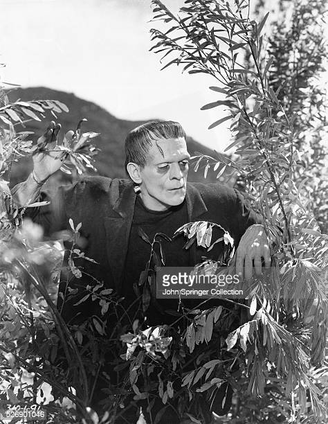1931 Movie Still for 'Frankenstein' with Boris Karloff as Frankenstein peering through the bushes