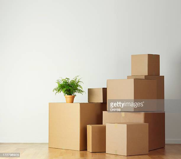 moving boxes stacked in an empty room ready for movers - carton stock photos and pictures