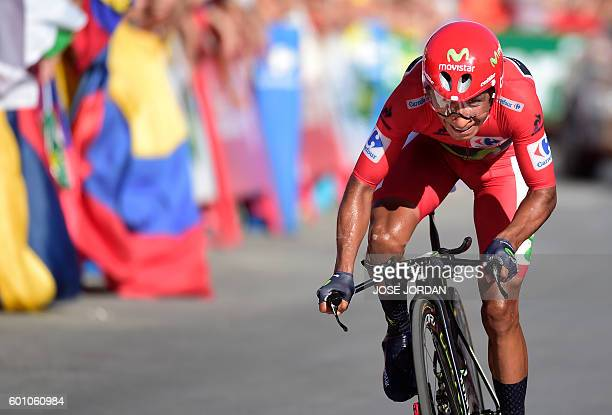 TOPSHOT Movistar's Colombian cyclist Nairo Quintana rides to the finish line during the 19th stage of the 71st edition of La Vuelta Tour of Spain a...