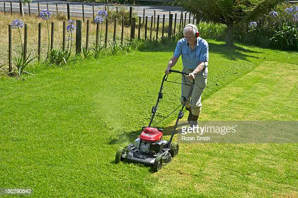 Mowing suburban lawn with motor mower.