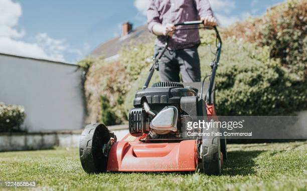 mowing the lawn - domestic garden stock pictures, royalty-free photos & images