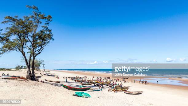 mozambique, fishing boats on the coast - nampula province stock pictures, royalty-free photos & images