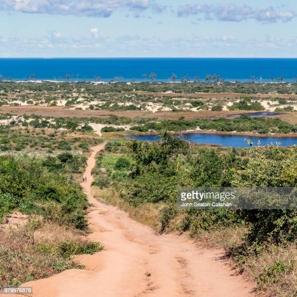 mozambique, footpath to the coast - nampula province stock pictures, royalty-free photos & images