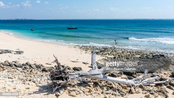 mozambique island, the ilha de goa - nampula province stock pictures, royalty-free photos & images