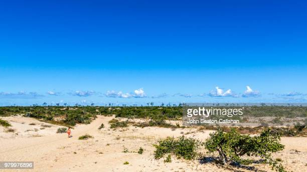 mozambique, sand dunes - nampula province stock pictures, royalty-free photos & images
