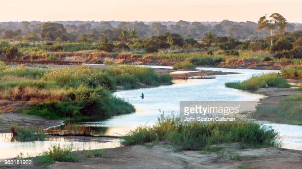 mozambique, the meluli river - mozambique stock pictures, royalty-free photos & images