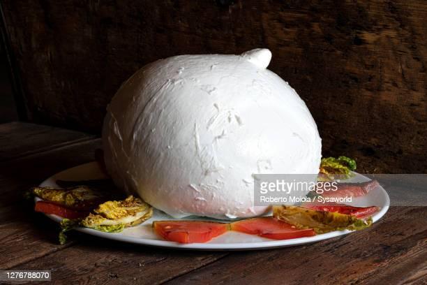 mozzarella di bufala zizzona of battipaglia, italy - still life foto e immagini stock