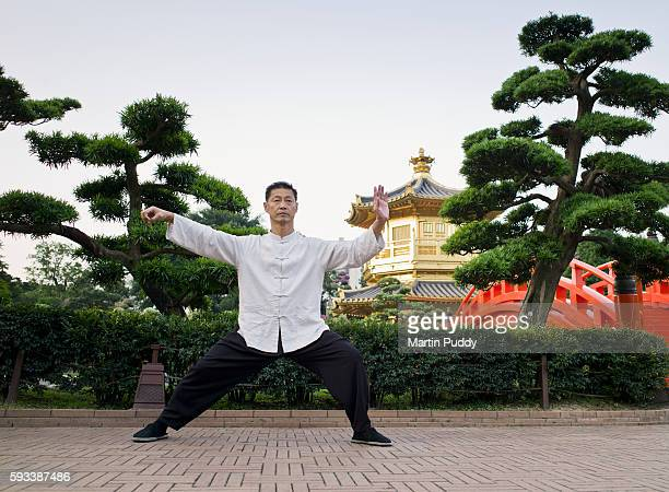 MP27.Man practicing Tai Chi