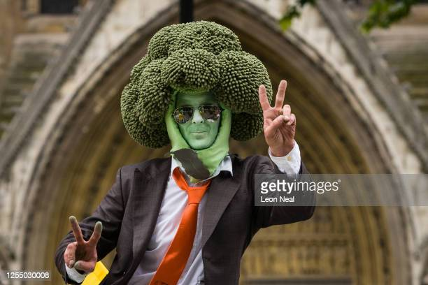 Mr Broccoli poses outside the Houses of Parliament as agricultural workers and farmers demonstrate as they call for protection for the British...