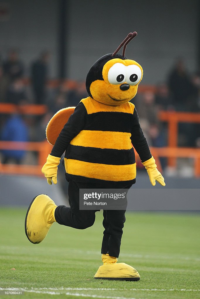 Mr Bumble, the Barnet mascot, entertains the crowd prior to the npower League Two match between Barnet and Northampton Town at Underhill Stadium on November 20, 2010 in Barnet, England