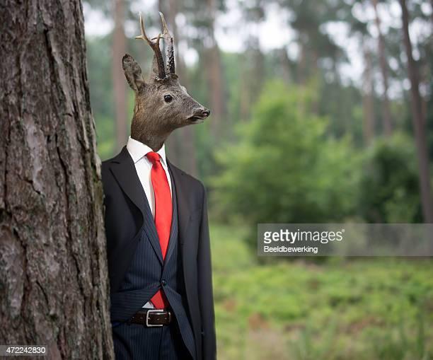 Herr Deer