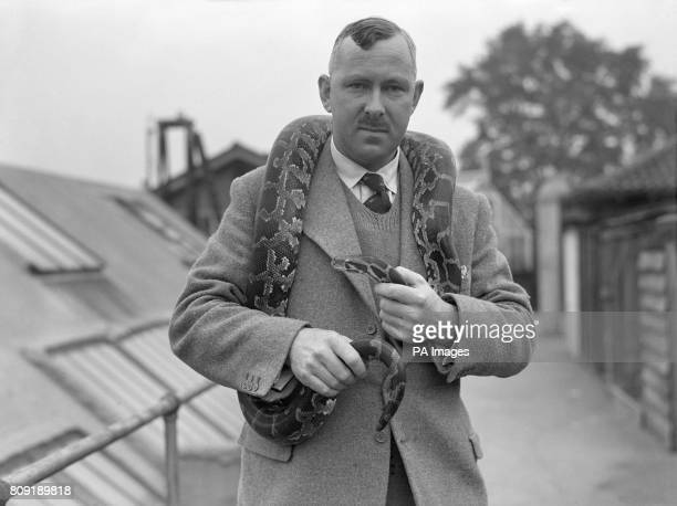 Mr George S. Cansdale, soon to be superintendent of London Zoo, stands with an Indian Python around his shoulders