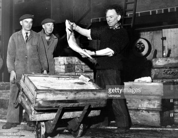 Mr Lal Summerton of Kensington Liverpool holds up a large Hake which was part of the first consignment of fish to arrive at the Liverpool Wholesale...