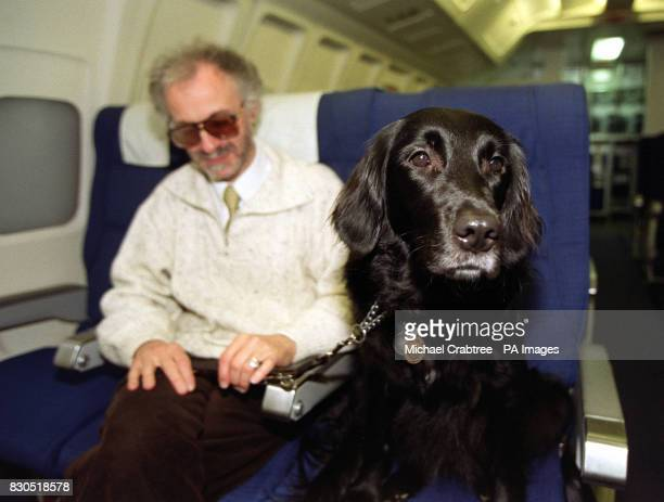 Mr Mike Nussbaum and his guide dog Gretl on board a British Midland plane at Heathrow in London British Midland are celebrating the addition of...