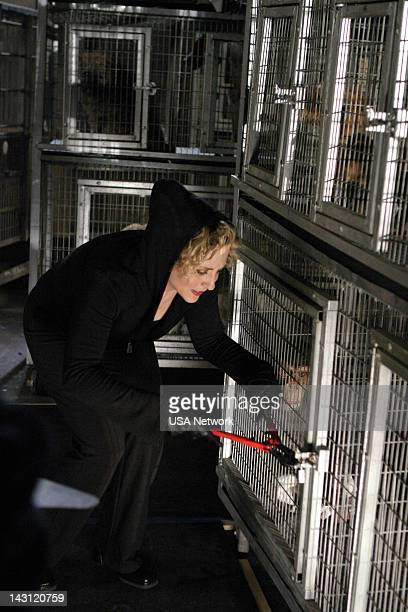 """Mr. Monk and the Panic Room"""" Episode 2 -- Pictured: Bitty Schram as Sharona Fleming --"""