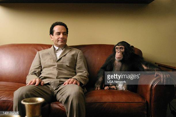 MONK Mr Monk and the Panic Room Episode 2 Pictured Tony Shalhoub as Adrian Monk Mowgli as Darwin the Chimp