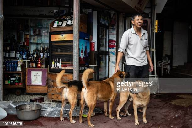 Mr Tsang, a liquor store owner, stands with dogs in the low-lying coastal village of Lei Yue Mun in the aftermath of Typhoon Mangkhut in Hong Kong on...