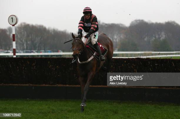Mr Whipped ridden by Nico de Boinville clears the last fence during their victory in The Liverpool University Thoroughbred Horseracing Industries MBA...
