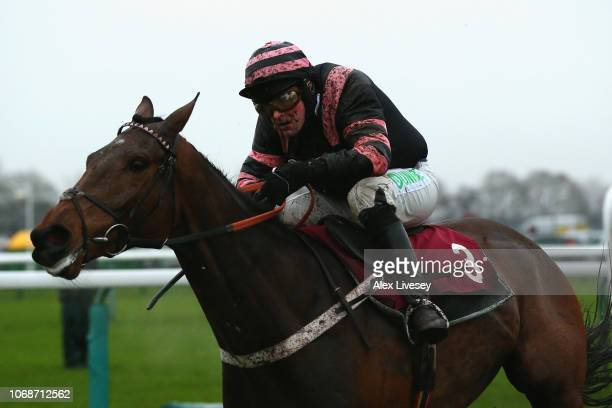 Mr Whipped ridden by Nico de Boinville races to the line after clearing the last fence during their victory in The Liverpool University Thoroughbred...