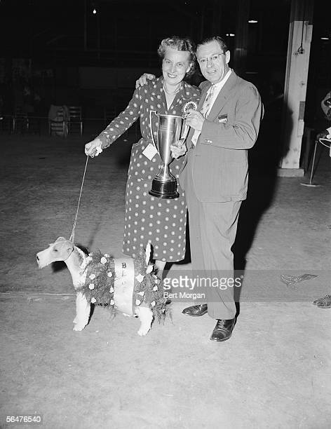 Mrs Arbutus Forslund with her whitehaired terrier which won Best in Show at a Palm Beach Kennel Club dog show and judge Lorris Warden circa 1939