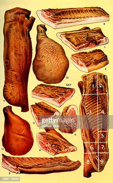 Mrs Beeton s cookery book bacon and ham Forelock Collar Streaky Prime back Small back Flank Long back Gammon Corner York ham Side of bacon Mild cured...