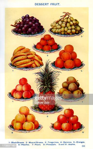Mrs Beeton 's cookery book - dessert fruit : Black grapes, Muscat grapes, Tangerines, Bananas, Oranges, Peaches, Pears, Pineapple, Apples.New edition...