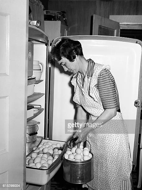 Mrs Case keeps eggs fresh in an electric refrigerator Lauderdale County Alabama June 1942