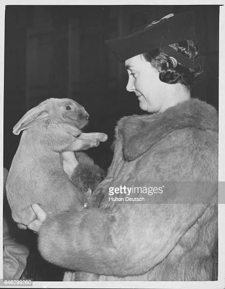 Mrs Garret holding a Blue Beveren rabbit and wearing a coat