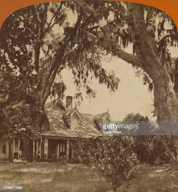 Mrs. Harriet Beecher Stowe's Place, At Mandarin, on St. John's River, W.H. Cushing , 1875-1879, Albumen silver print.