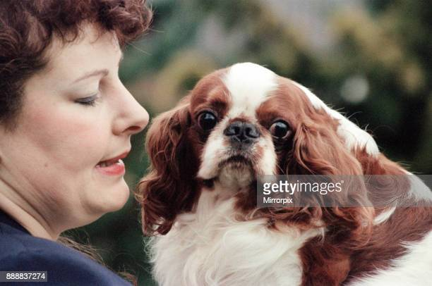 Mrs Julia Huggins with King Charles Spaniel Theron who is the living breed record holder with 30cc score 7th March 1994