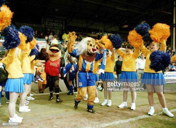 Mrs Lenny one of the Shrewsbury Town mascots enters on to the pitch for Battle of the Mascots match at Gay Meadow home of Shrewsbury Town