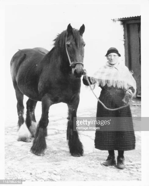 Mrs Mary Williams Garreg Lefain Myddfai with 'Scott' the mare c1970 Mrs Williams was interviewed and recorded by St Fagans National History Museum...